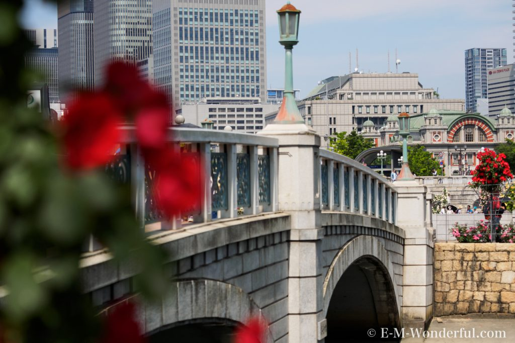 20160515 P5150726 1024x682 - 都会の中心でたくさんのバラを見れる、中之島公園バラ園その2