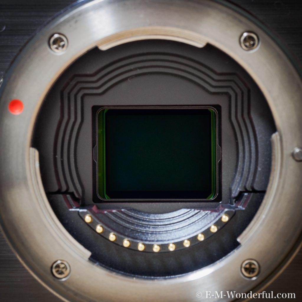 20160530 P5300029 1024x1024 - センサーサイズを覚えよう~デジタル一眼カメラのススメ~