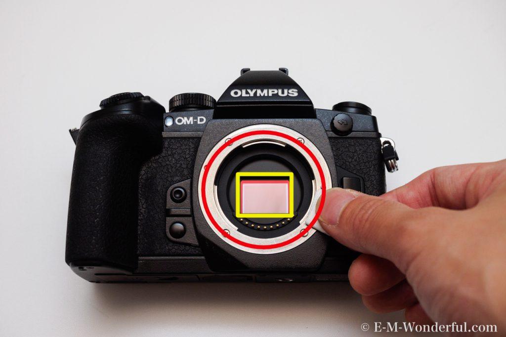 20160610 P6104684 1 1024x682 - 正しい方法でカメラボディを掃除しよう~デジタル一眼カメラのススメ~