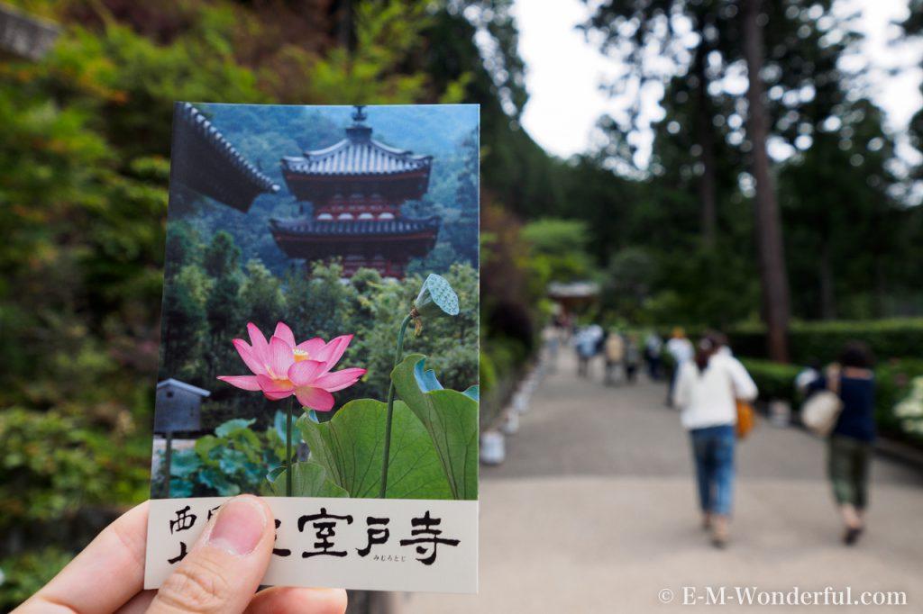 20160611 P6110015 1024x682 - 京都のあじさい寺、三室戸寺に行ってきました~その1~