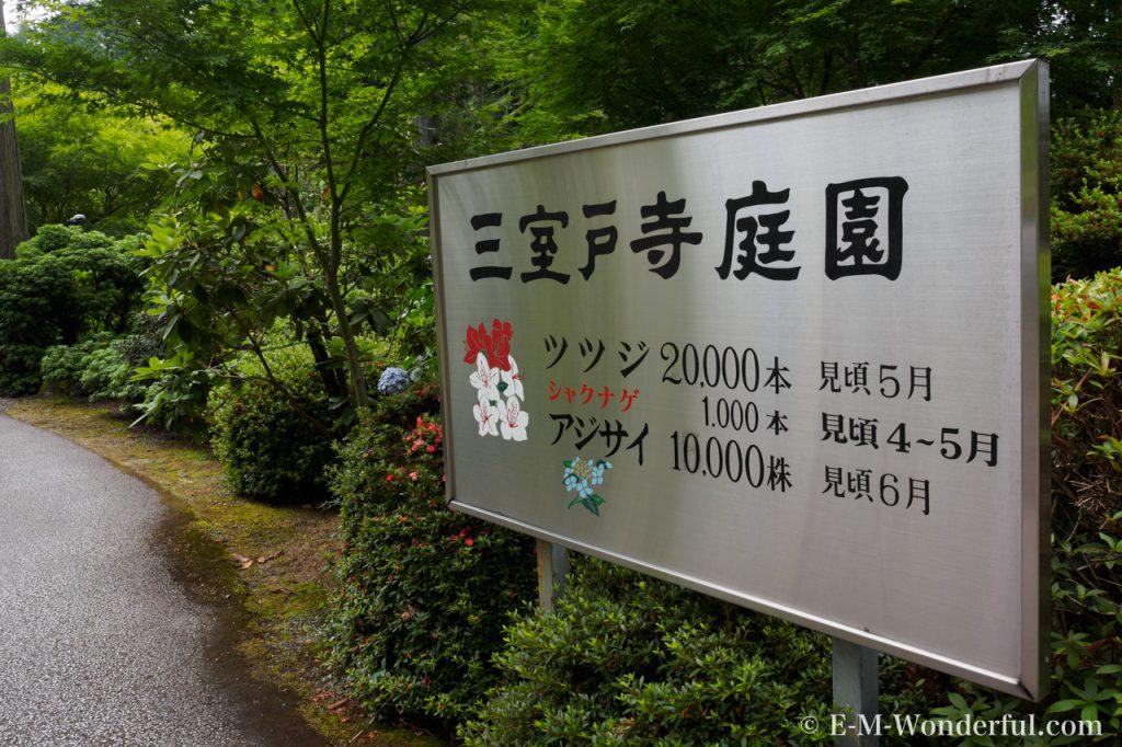 20160611 P6110102 1024x682 - 京都のあじさい寺、三室戸寺に行ってきました~その1~