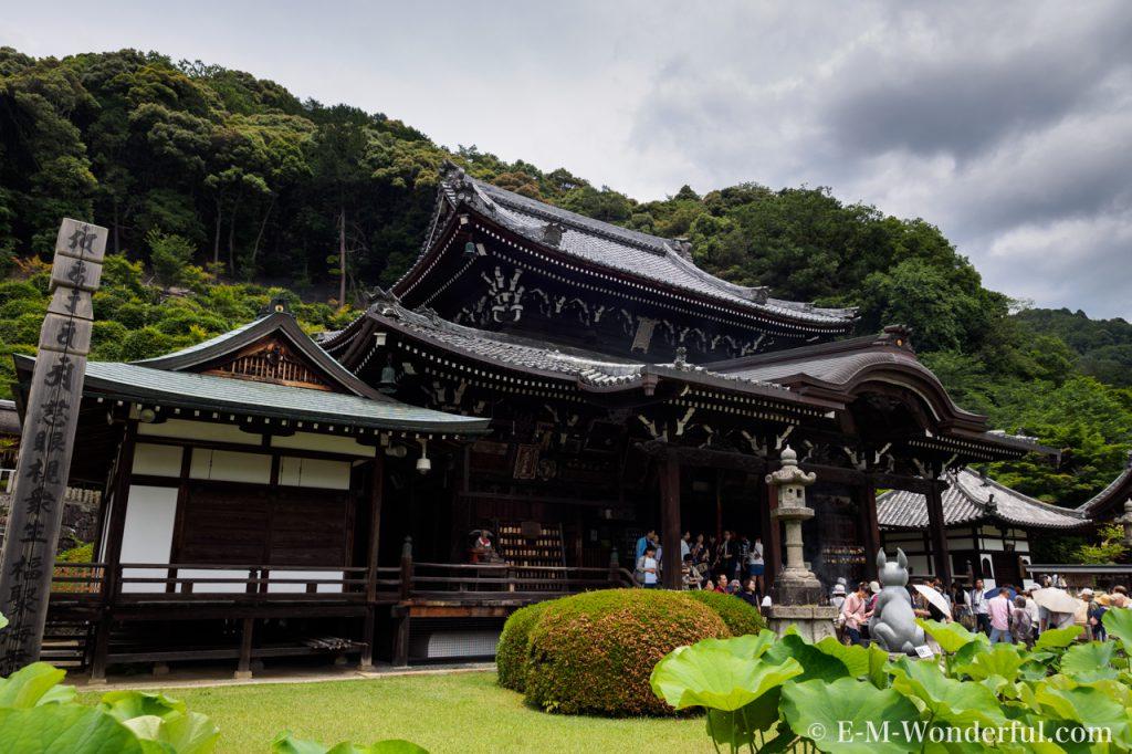 20160611 P6110531 1024x682 - 京都のあじさい寺、三室戸寺に行ってきました~その1~