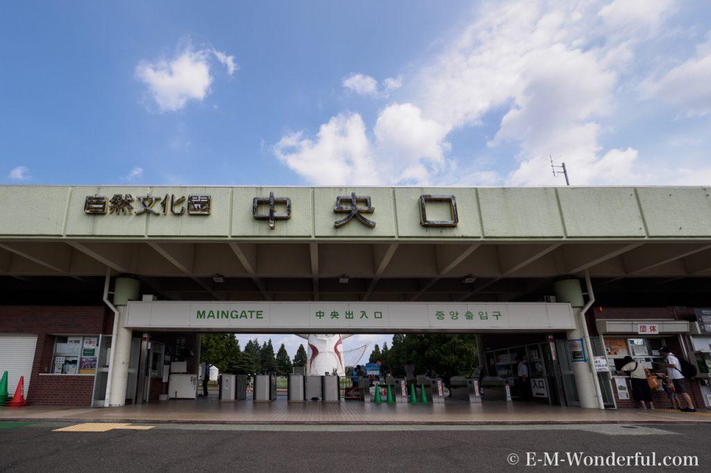 20160813 P8130038 1024x682 - 万博記念公園に向日葵(ひまわり)を見に行ってきました