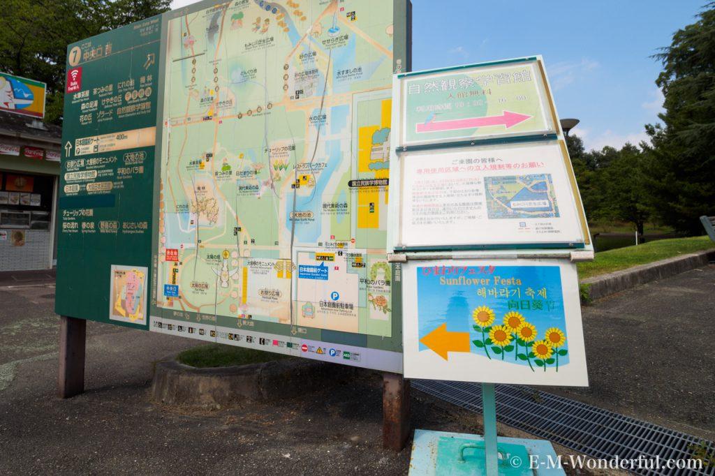 20160813 P8130053 1024x682 - 万博記念公園に向日葵(ひまわり)を見に行ってきました
