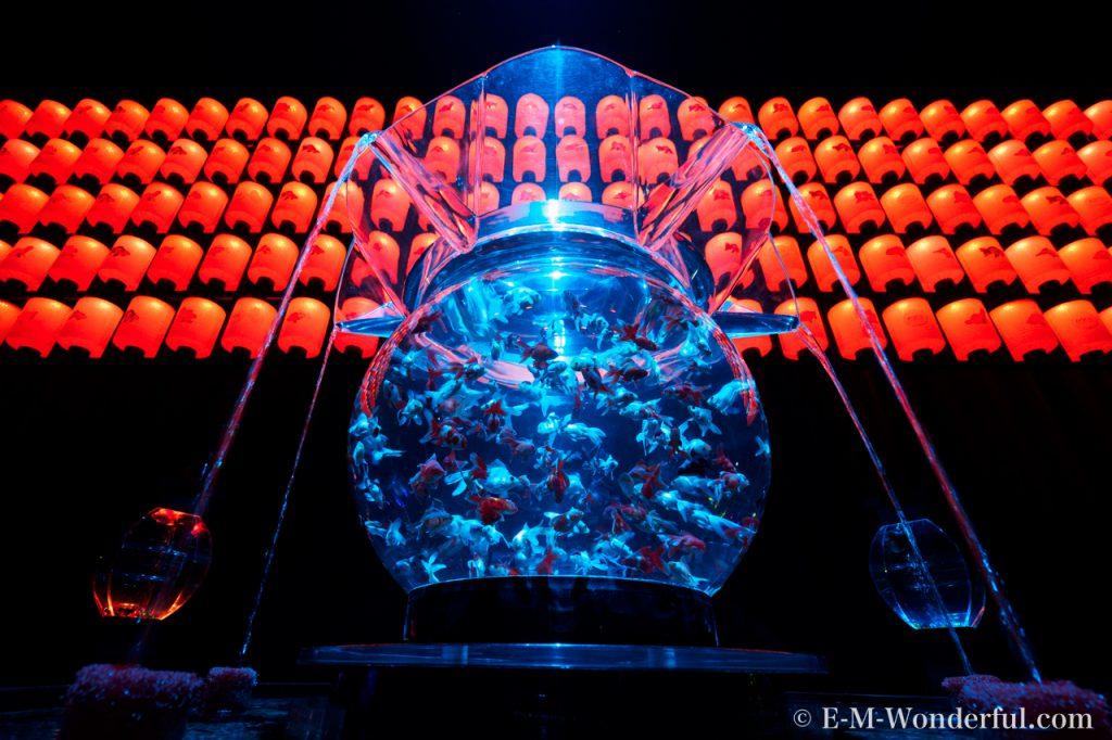 20160815 P8150240 1024x682 - 金魚が煌びやかに舞う、アートアクアリウム展に行ってきました