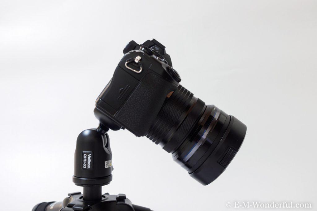 20160831 P8314925 1024x682 - 初心者でもわかる、アングルとポジションの基本~デジタル一眼カメラのススメ~