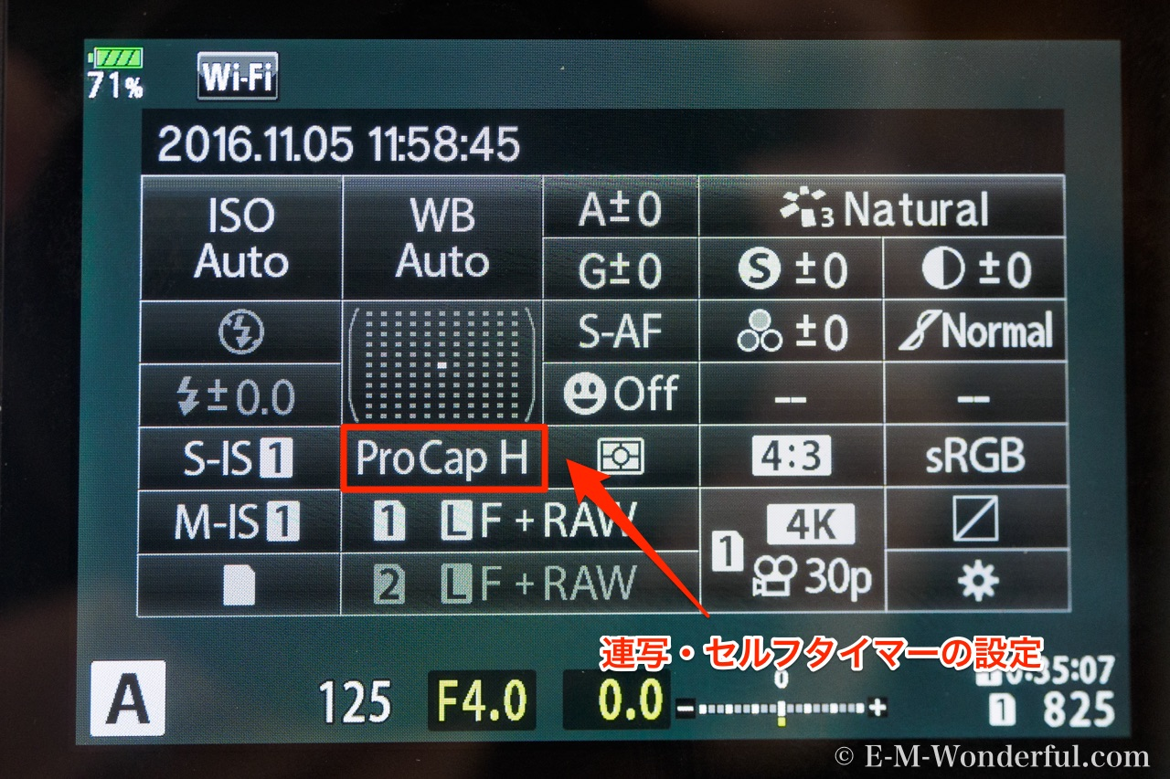 20161105 PB050047 1 - オリンパス プラザでE-M1 Mark Ⅱを試用レビュー