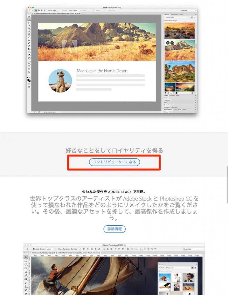 15c86fd1a47b7e67e10d77ae399f8528 793x1024 - AdobeStockのコントリビューターに登録して、写真を販売しよう