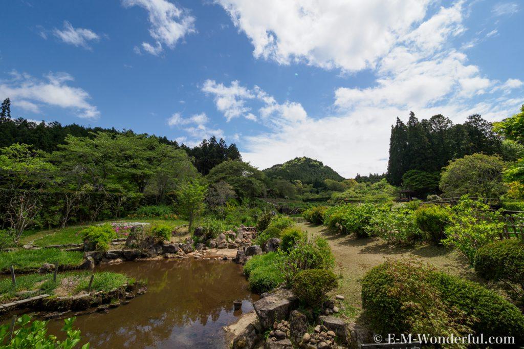 20170504 P5040021 1024x682 - 滝谷花しょうぶ園で、満開の芝桜を見てきました