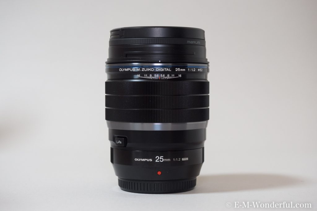 20170114 P1140037 1024x682 - 2017年購入して良かったカメラ関連・Apple関連商品まとめ