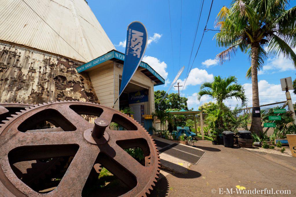 20170531 P5310472 1024x682 - 初めてのハワイ旅行、オアフ島一周観光ツアーに参加しました