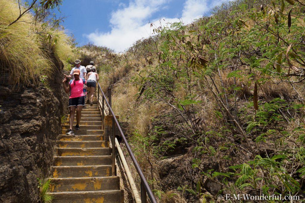 20170603 P6030579 1024x682 - 初めてのハワイ旅行、ダイヤモンドヘッドに登頂しました