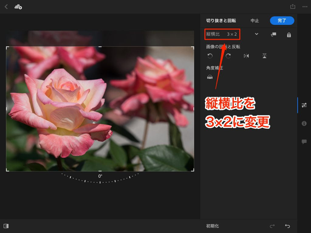 IMG 0093 1024x768 - iPad ProでAdobe Photoshop Lightroom CC モバイル版を使ってみました