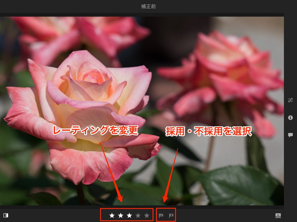 IMG 0109 1024x768 - iPad ProでAdobe Photoshop Lightroom CC モバイル版を使ってみました