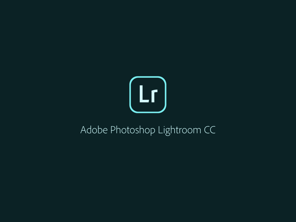 IMG 0966 1024x768 - iPad ProでAdobe Photoshop Lightroom CC モバイル版を使ってみました