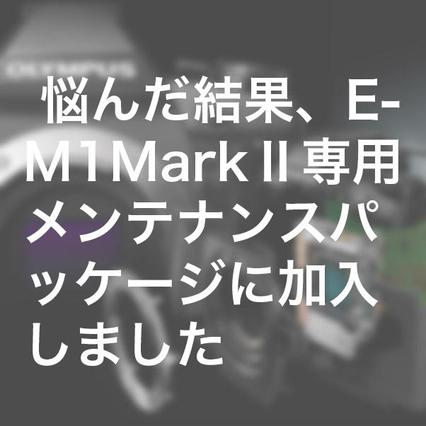 fc6927a4cd7fc6f068de9eb5d3ae4aff - 悩んだ結果、E-M1 Mark Ⅱ専用メンテナンスパッケージに加入しました