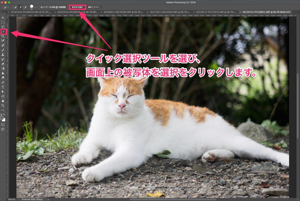eece8dd1e3d20117ad990d2338c6ef78 1024x685 - Photoshop CC 19.1の新機能、「被写体を選択」を試してみました