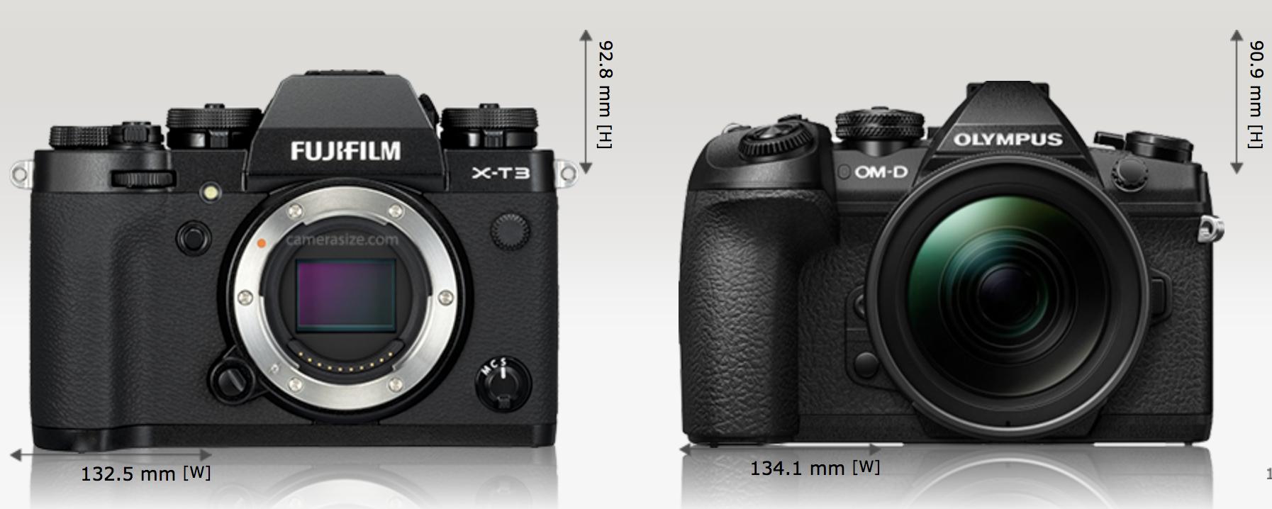 fef718c706da12515320c7f7ec117eb3 - 富士フィルム X-T3とオリンパス OM-D E-M1markⅡを比較してみました