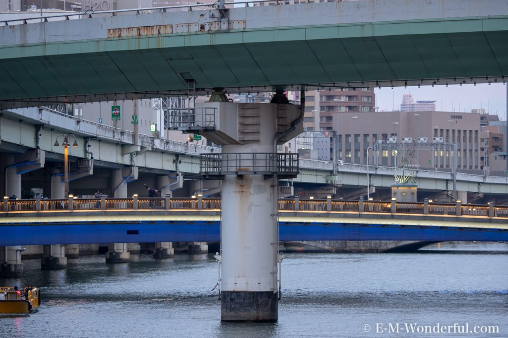 20190217 P2170106 1024x682 - M.ZUIKO DIGITAL ED 12-100mm F4.0 IS PROと12-40mm F2.8 PRO比較レビュー
