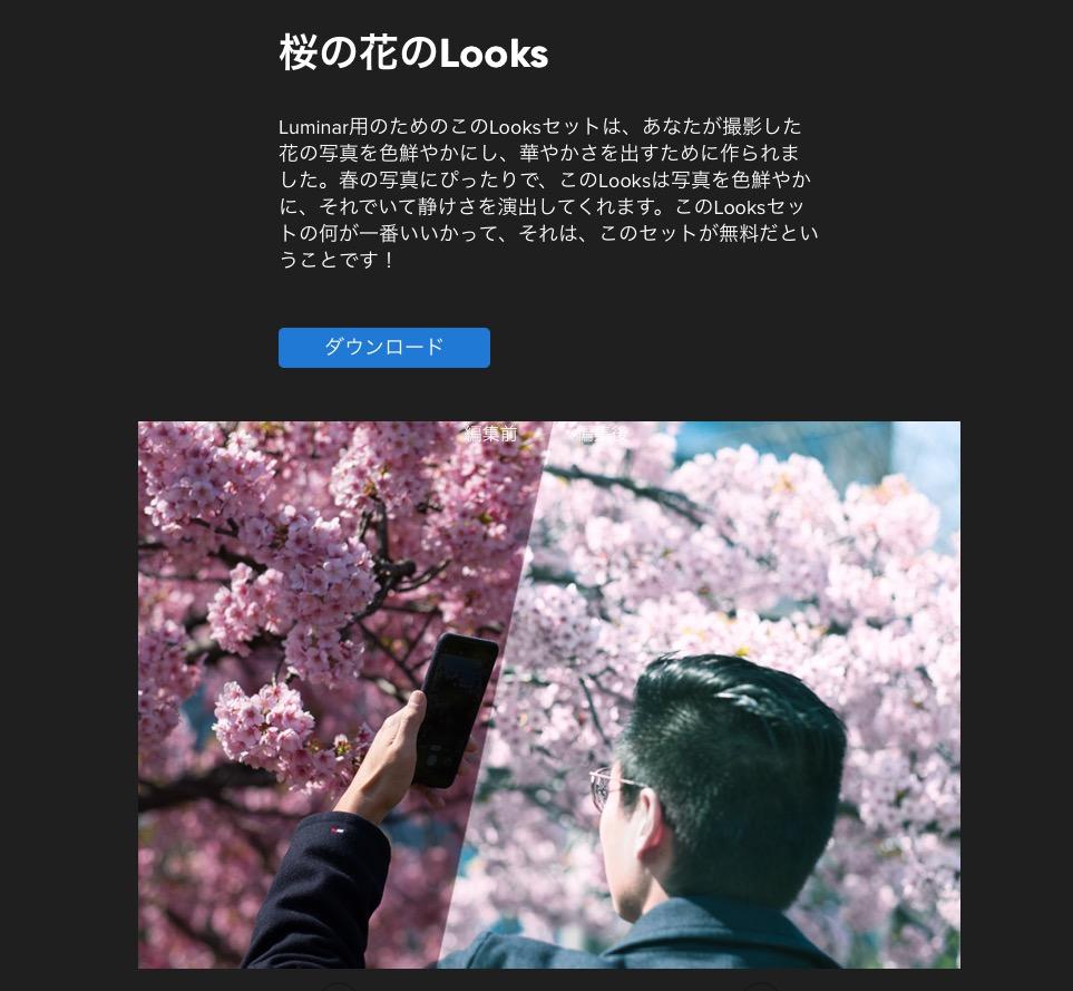 24499f4483c335bfb4ce2d234d5b51d8 - 桜の花を簡単に華やかに、Luminarの桜の花のLOOKSレビュー