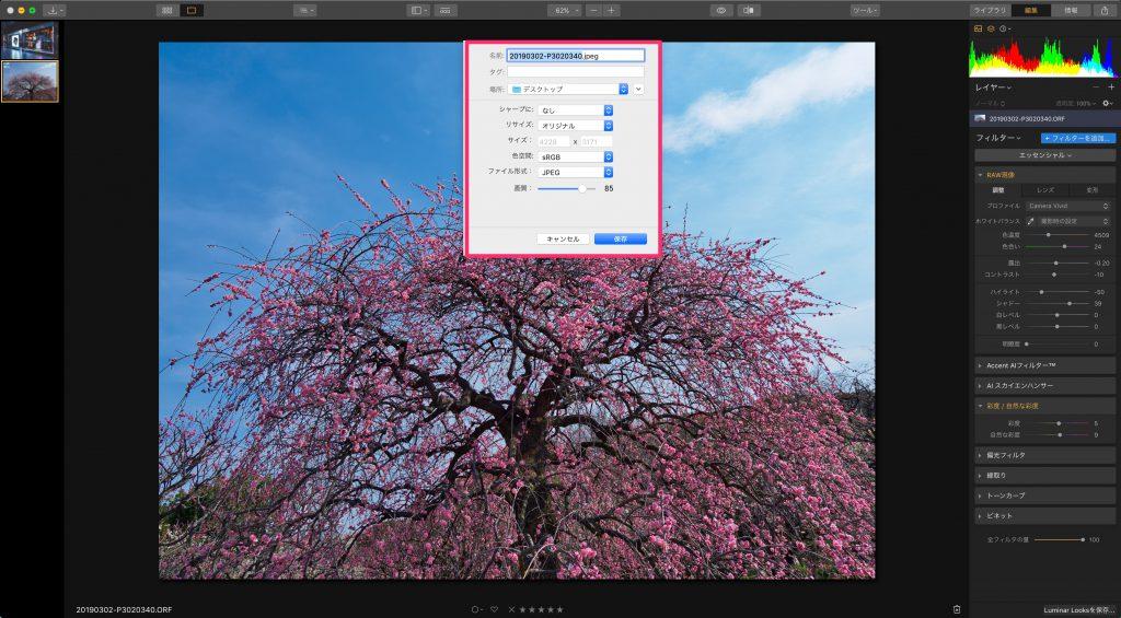 566fdee2281a795214a3c81c731dd076 1024x565 - 初心者でもできる、Luminar 3を使ったRAW現像の手順
