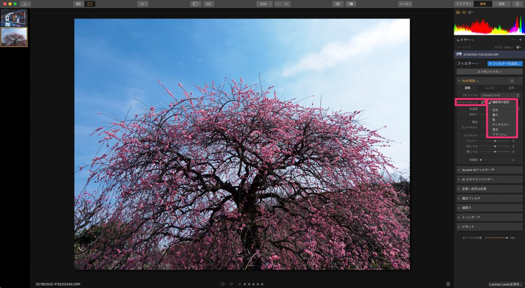 6c92c9e071794145d4b01f7a71e21c68 1024x563 - 初心者でもできる、Luminar 3を使ったRAW現像の手順