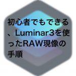 c249356b53805365a8e9b18b381f334d 150x150 - 初心者でもできる、Luminar3を使ったRAW現像の手順