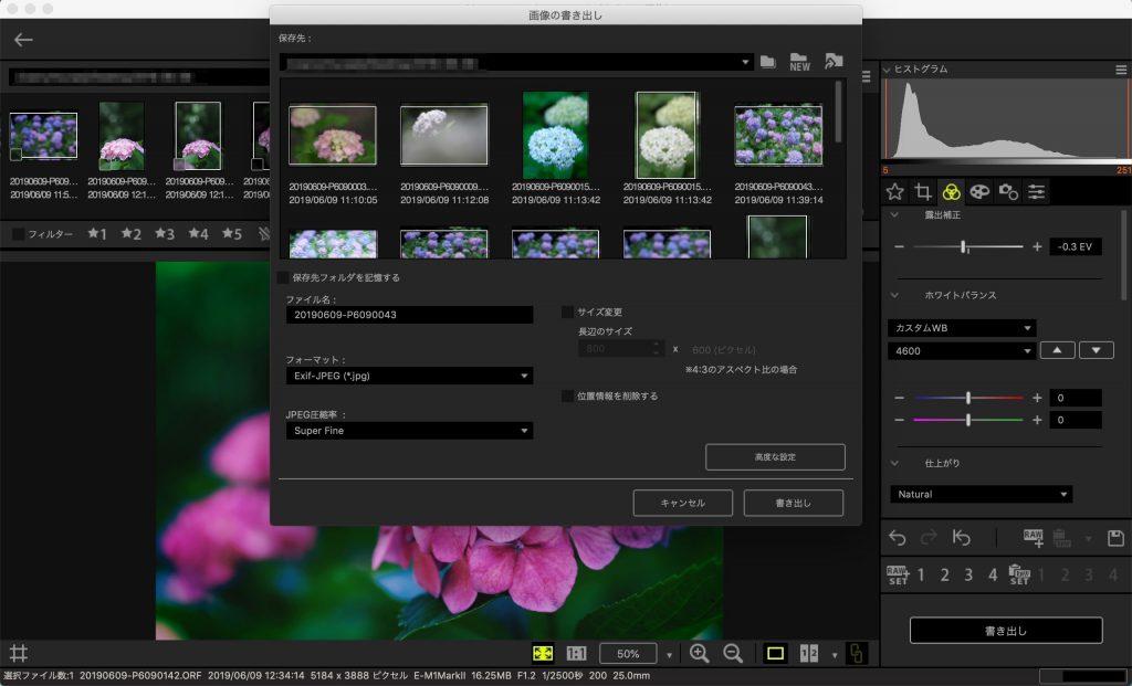 2de2bdf123442190897ef6ec2f5a1073 1024x621 - Olympus Workspaceの編集スピードを高速化、USB RAW編集の使い方
