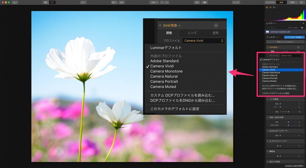 293cb4a9ee2b14b35be43241c0a3770f 1024x563 - LuminarによるRAW現像とJPEG現像の違い