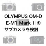 12995c49b52891104350ff31614c84b1 150x150 - OLYMPUS OM-D E-M1 Mark Ⅱのサブカメラを検討する