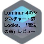 4622d0222857e9097863e2f301c2b61f 150x150 - Luminar 4のシグネチャー・森Looks、「魔法の森」レビュー