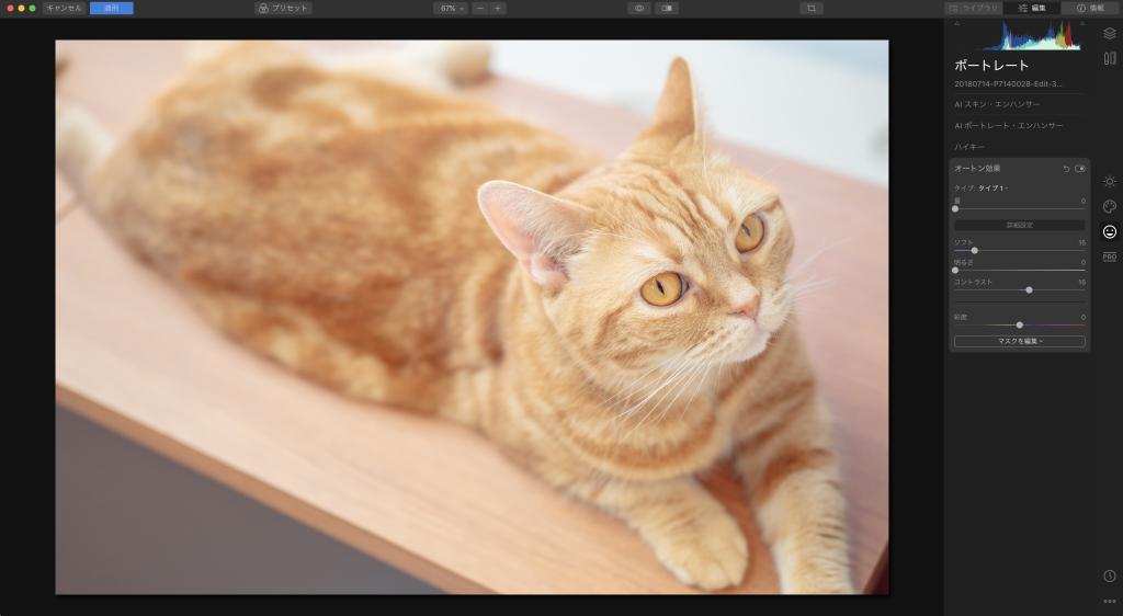 1909032948fdcaaf54ea8f9547f115db 1024x562 - Luminarで猫写真を編集するヒント(Luminar 4)