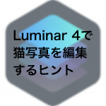 4622d0222857e9097863e2f301c2b61f 150x150 - Luminarで猫写真を編集するヒント(Luminar 4)