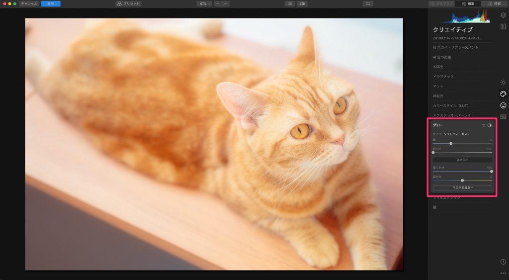 72bcd9c780870296bb266aeadec3263a 1024x563 - Luminarで猫写真を編集するヒント(Luminar 4)