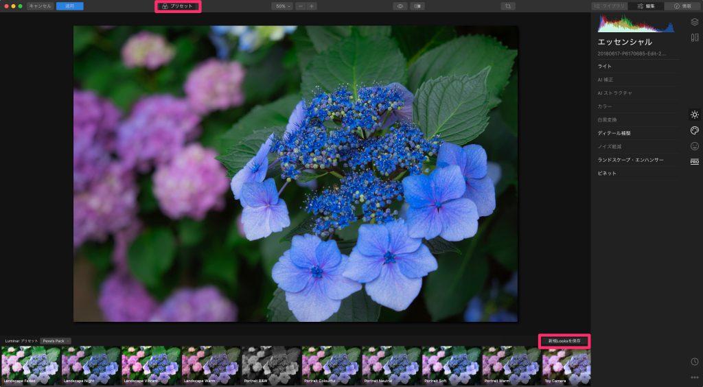 0cd8694dc345cdd5fd369b05e6c09f27 1024x564 - Luminar 4とLightroom併用ユーザーのためのプリセット活用術(Looks)
