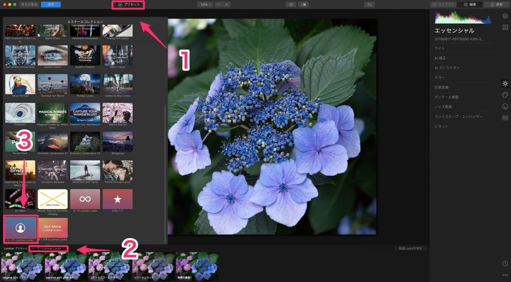4c1ac5a6e6b617fdf11e0be1c58aae7f 1024x565 - Luminar 4とLightroom併用ユーザーのためのプリセット活用術(Looks)