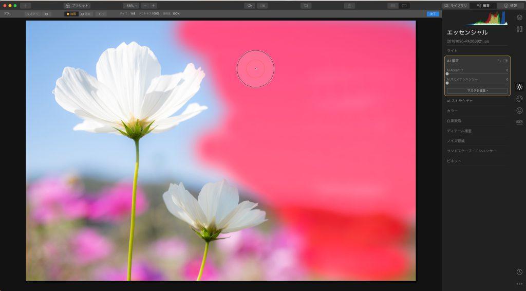 79f03ff9be84394795fd5f7e6c6a4c08 1024x566 - Luminar 4.3レビュー(クロップツールの改善・Looksの高速プレビュー・写真検索など)