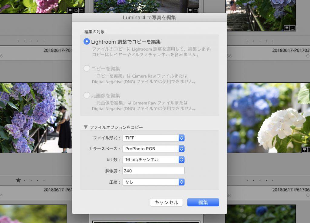 8d04e6e9b82f7ea034c1ab0a4a5d484b 1024x736 - Luminar 4とLightroom併用ユーザーのためのプリセット活用術(Looks)