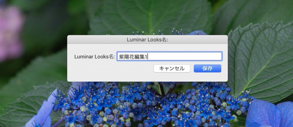 e65913e183ed15275f2406c979058a26 1024x447 - Luminar 4とLightroom併用ユーザーのためのプリセット活用術(Looks)