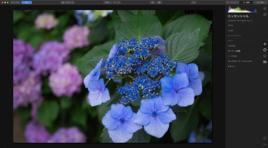 e99970fa13f365d4ee1e4a589f5d58df 1024x565 - Luminar 4とLightroom併用ユーザーのためのプリセット活用術(Looks)