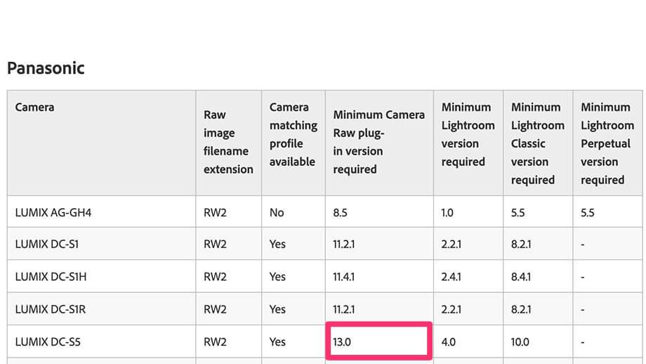 8c5972ef30396e69db45d77275e4932c - Luminar AI 未対応のRAWデータをDNGに変換して使用する方法